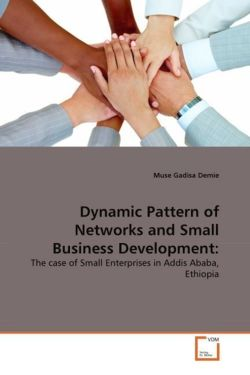 Dynamic Pattern of Networks and Small Business Development: