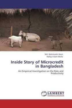 Inside Story of Microcredit in Bangladesh