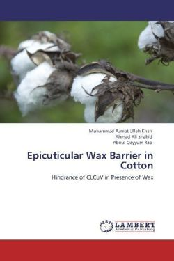 Epicuticular Wax Barrier in Cotton