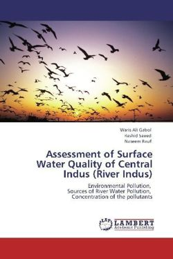 Assessment of Surface Water Quality of Central Indus (River Indus) - Ali Gabol, Waris / Saeed, Rashid / Rauf, Naseem