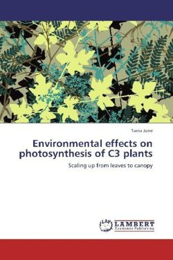 Environmental effects on photosynthesis of C3 plants - June, Tania