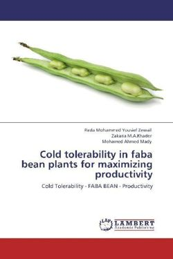 Cold tolerability in faba bean plants for maximizing productivity - Mohammed Yousief Zewail, Reda / M. A. Khader, Zakaria / Ahmed Mady, Mohamed