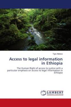 Access to legal information in Ethiopia - Melese, Tiglu