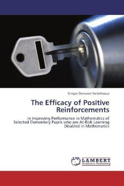 The Efficacy of Positive Reinforcements