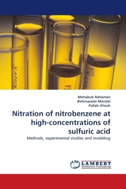 Nitration of nitrobenzene at high-concentrations of sulfuric acid: Methods, experimental studies and modeling