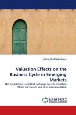 Valuation Effects on the Business Cycle in Emerging Markets - Castilleja-Vargas, Liliana