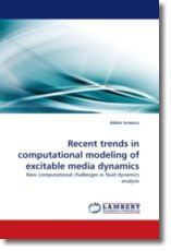Recent trends in computational modeling of excitable media dynamics