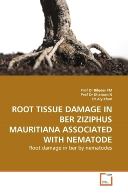 ROOT TISSUE DAMAGE IN BER ZIZIPHUS MAURITIANA ASSOCIATED WITH NEMATODE: Root damage in ber by nematodes