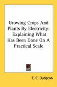 Growing Crops and Plants by Electricity: Explaining What Has Been Done on a Practical Scale