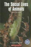 The Social Lives of Animals: A Chapter Book