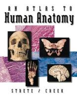 An Atlas to Human Anatomy