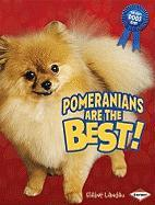 Pomeranians Are the Best!