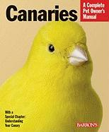 Canaries: Everything about Purchase, Care, and Nutrition