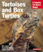 Tortoises and Box Turtles