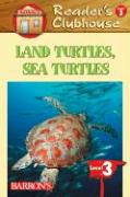 Land Turtles, Sea Turtles