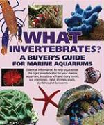 What Invertebrates?: A Buyer's Guide for Marine Aquariums