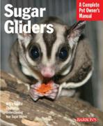 Sugar Gliders: Everything about Purchase, Nutrition, Behavior, and Breeding