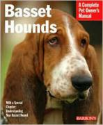 Basset Hounds: Everything about Purchase, Feeding, and Health Care