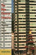 The New Chinese America: Class, Economy, and Social Hierarchy