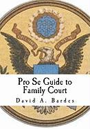 Pro Se Guide to Family Court