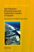 High Resolution Morphodynamics and Sedimantary Evolution of Estuaries