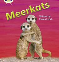 Phonics Bug Meerkats Phase 5