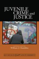 Juvenile Crime and Justice