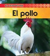 El Pollo (Chicken)
