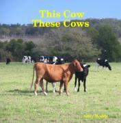 This Cow These Cows