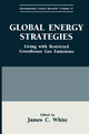 Global Energy Strategies - James C. White