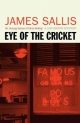 Eye Of The Cricket - James Sallis