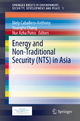 Energy and Non-Traditional Security (NTS) in Asia - Mely Caballero-Anthony; Youngho Chang; Nur Azha Putra