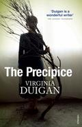Precipice - Virginia Duigan