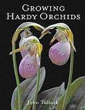 Growing Hardy Orchids - John Tullock