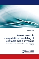 Recent trends in computational modeling of excitable media dynamics - Adela Ionescu