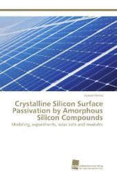 Crystalline Silicon Surface Passivation by Amorphous Silicon Compounds - Roman Petres