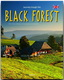 Journey through the Black Forest - Martin Schulte-Kellinghaus