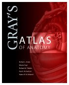 Gray's Atlas of Anatomy, 1e (Gray's Anatomy) - Richard L. Drake; A. Wayne Vogl; Adam W. M. Mitchell; Richard Tibbitts; Paul Richardson