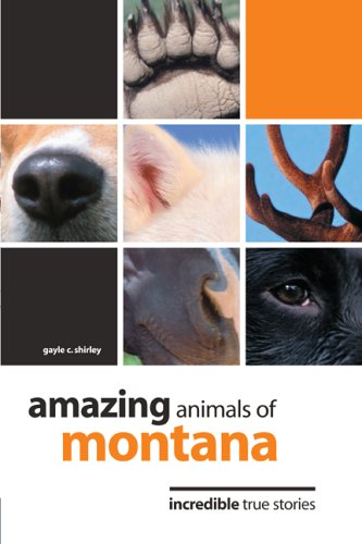 Amazing Animals of Montana: Incredible True Stories - Gayle C. Shirley