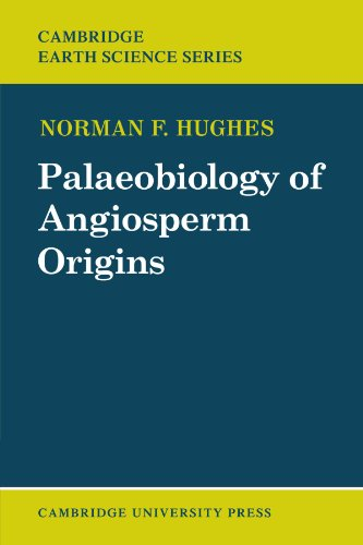 Palaeobiology of Angiosperm Origins: Problems of Mesozoic seed-plant evolution (Cambridge Earth Science Series) - Norman F. Hughes