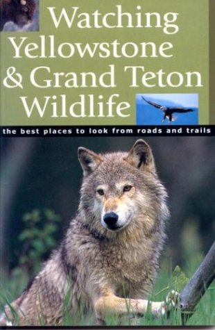 Watching Yellowstone And Grand Teton Wildlife: The Best Places to Look From Roads and Trails - Todd Wilkinson