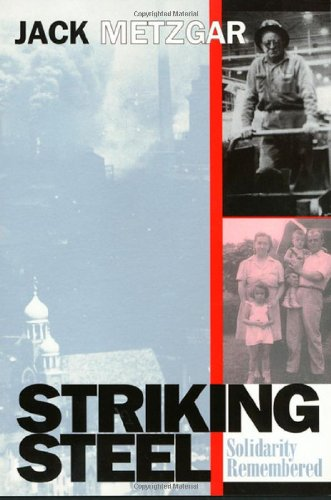 Striking Steel (Solidarity Remembered) (Critical Perspectives on the past series) - Jack Metzgar
