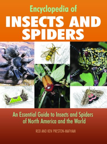 Encyclopedia of Insects And Spiders: An Essential Guide to Insects and Spiders of North America and the World - Rod Preston-Mafham; Ken Preston-Mafham