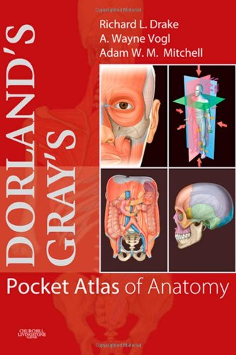 Dorland's/Gray's Pocket Atlas of Anatomy, 1e (Dorland's Medical Dictionary) - Richard L. Drake; A. Wayne Vogl; Adam W. M. Mitchell