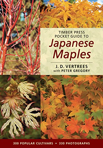 Timber Press Pocket Guide to Japanese Maples (Timber Press Pocket Guides) - J. D. Vertrees; Peter Gregory