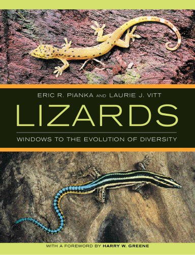 Lizards: Windows to the Evolution of Diversity (Organisms and Environments) - Eric R. Pianka; Laurie J. Vitt