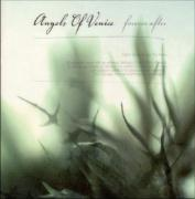 Forever After - Angels Of Venice