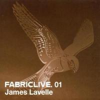 Fabric Live 01 - Lavelle, James