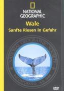 National Geographic: Wale - Sanfte Riesen in Gefahr