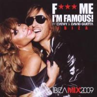 F*** Me I'm Famous Vol.5 - Guetta, David